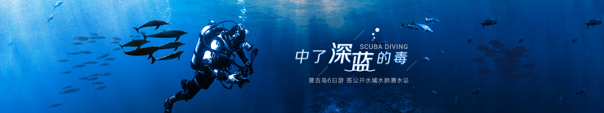 中了深海的毒